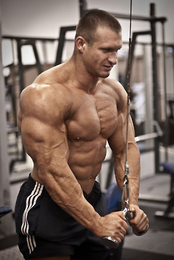 Lukas Gabris Tricep Workout